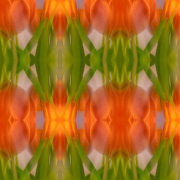 Tulpe Collage | Abstrakt von Rob van der Pijll