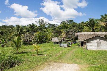 Un village vert dans la jungle du Belize sur Joost Winkens
