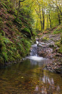 blik op de waterval in de Ninglinspo van Francois Debets