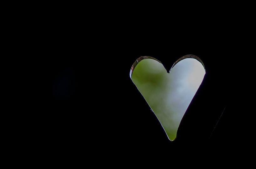 Love van Dick Nieswaag