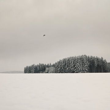 Paysage hivernal sur Lena Weisbek