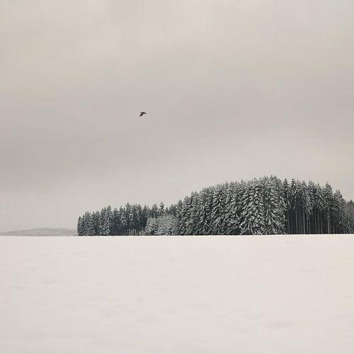 Winterlandschaft von Lena Weisbek