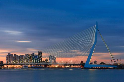 Erasmus bridge - Rotterdam - Netherlands van