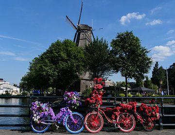 Blumenfahrräder von Odette Kleeblatt