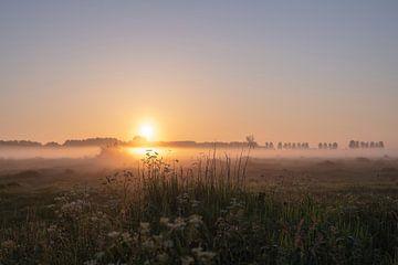 Landschaft Teil 3 von Tania Perneel