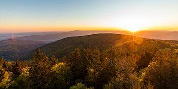 Uitzicht vanuit Schauinsland over het Zwarte Woud van Werner Dieterich