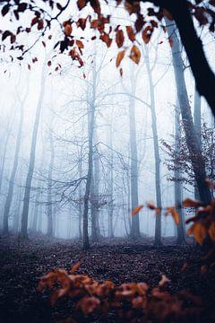 Mystischer Wald 018 van Oliver Henze