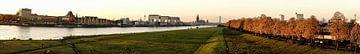 Keulen aan de Rijn van Stefan Havadi-Nagy