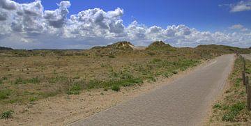 Wanderweg in Zandvoort von Jose Lok
