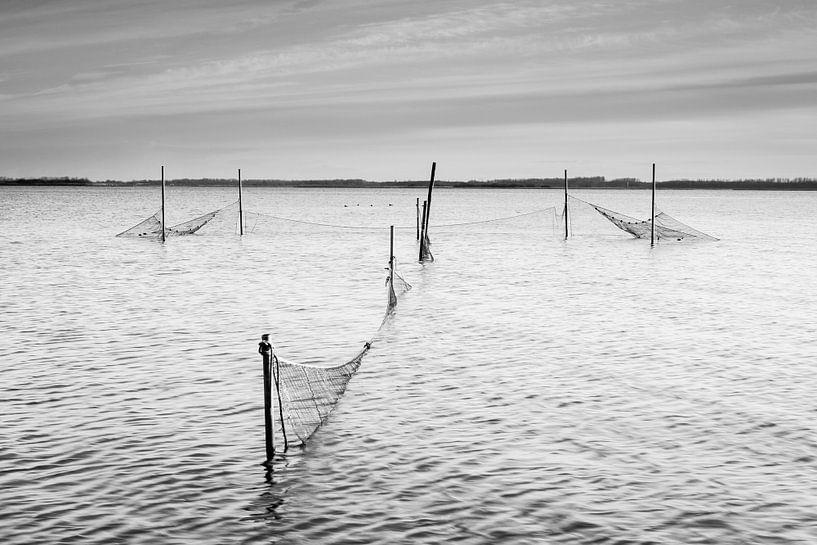 Palingfuik in het Lauwersmeer von robert wierenga
