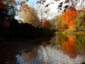spiegeling in het water met herfstkleuren van