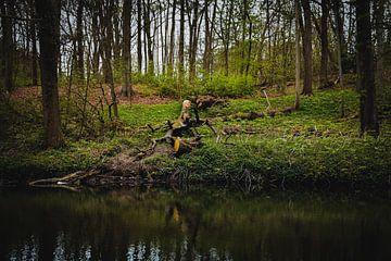 Boomstronk langs het water van Merel Pape Photography