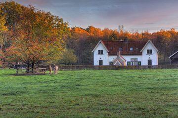 Haus in der Nähe von Staverden Estate
