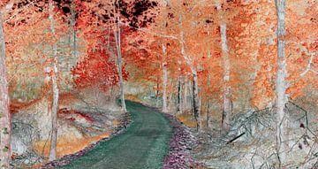 koperkleurig bos van Corinne Welp