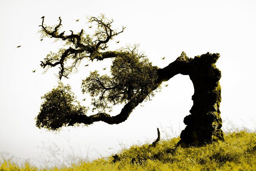 levenskracht / the power of life van Harrie Muis