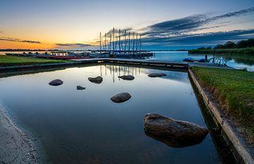Le poireau du lac au lever du soleil. sur Ron ter Burg
