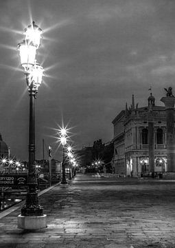 Venedig San marco von Olivier Van Cauwelaert