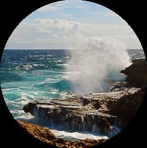 Boca Tabla Curaçao van Discover Dutch Nature