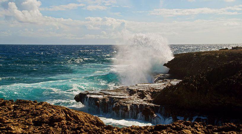Boca Tabla Curaçao von Discover Dutch Nature