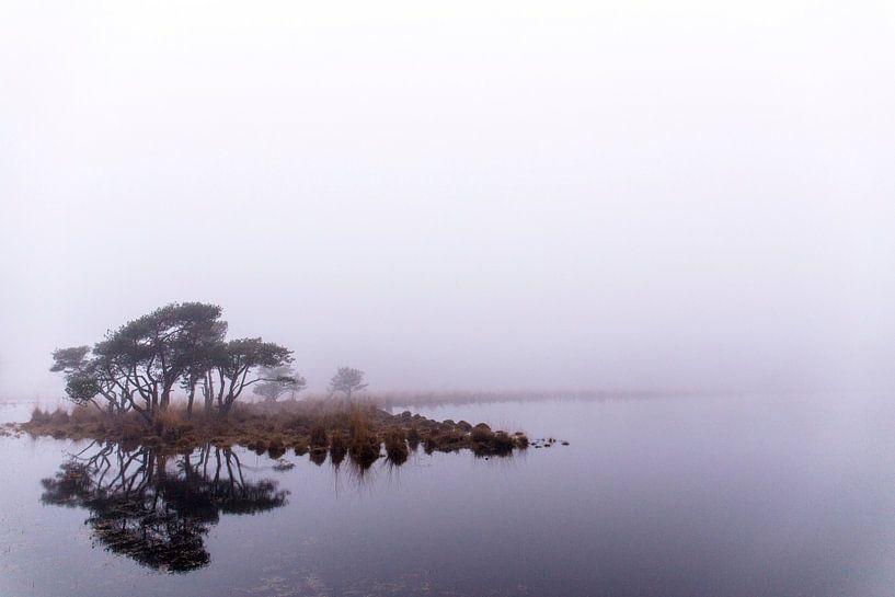 Spiegeling in de mist, Strijbeek, Strijbeekse heide, Noord-Brabant, Holland, afbeelding mist van Ad Huijben