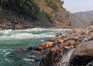 The rivier de Ganges in India van