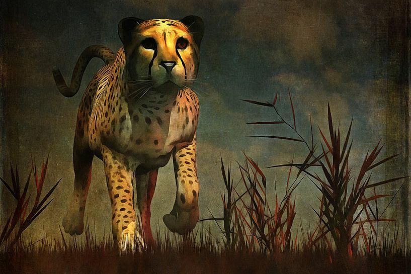 Dierenrijk – Cheetah  komt recht naar je toe tijdens de jacht van Jan Keteleer