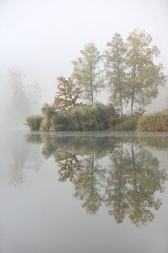 Bäume am See von Jana Behr