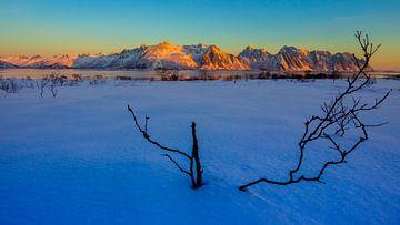 Zonsondergang in een berglandschap van Saimi Bauters