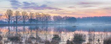 Vlaardingen, mistige zonsopgang boven meer in de winter van Henno Drop