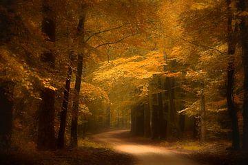 Gouden bospad sur