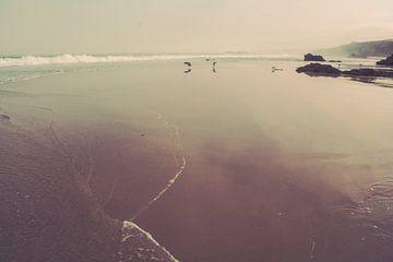 Wilde kust Portugal - Vuurtoren van FOTOFOLIO.DE
