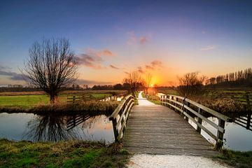 Polderpark Cronesteyn zonsondergang van Dennis van de Water