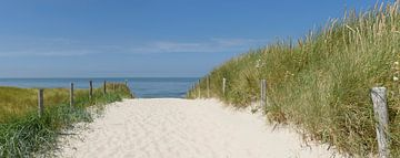 Pad door de duinen naar het strand. van Sjoerd van der Wal
