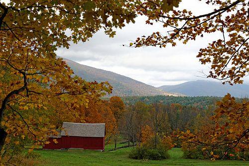 Herbst in Vermont van
