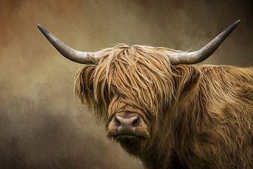 Schottischer Highlander Porträt von Diana van Tankeren