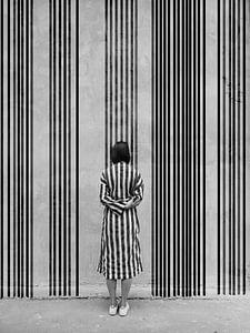 Stripes, pt1 van haenk