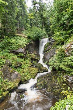 Wasserfall Triberg Deutschland von Alex Hiemstra