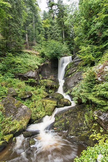 Waterval Triberg Duitsland van Alex Hiemstra