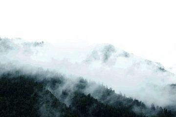 Landschaft Österreich von pien slooter