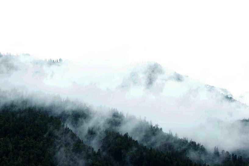 Landschap Oostenrijk van pien slooter