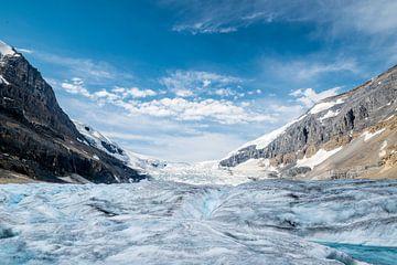 Athabasca Gletsjer van Peter Vruggink