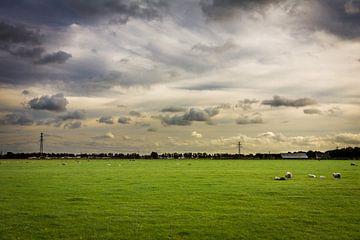 Hollands landschap van Victor van Dijk
