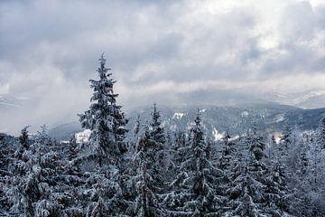 Winter im Riesengebirge bei Benecko von Rico Ködder