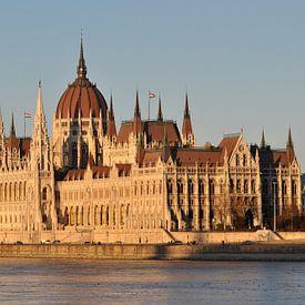 Evening in Budapest sur Rogier Vermeulen