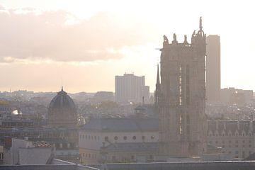 Uitzicht over Parijs met Notre Dame van Remco Phillipson