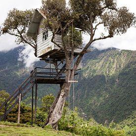 Boomhut in Ecuador - Casa Del Arbol Baños van Bart van Eijden