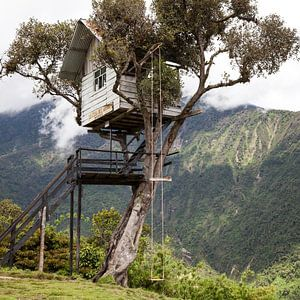 Boomhut in Ecuador - Casa Del Arbol Baños van