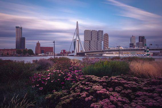 Rotterdam Skyline von Ronne Vinkx