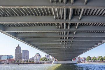 Onder de brug van Peter van Hengstum