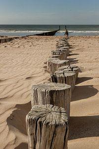 Strandpaaltjes in Zeeland van Alfred Meester